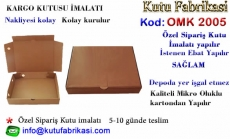 Kargo-kutusu-imalati-2005.jpg